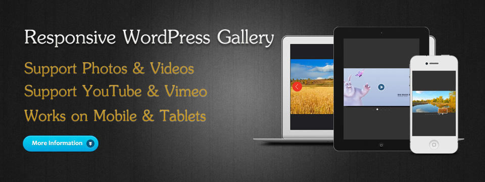 WordPress Photo & Video Gallery Plugin