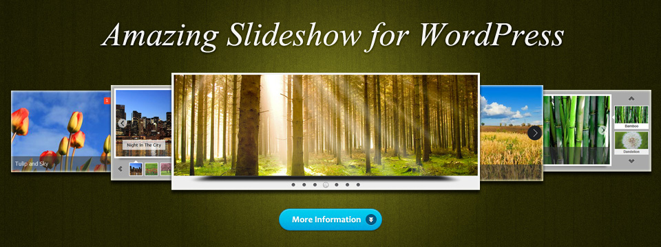 WordPress Image Slider, Video Gallery
