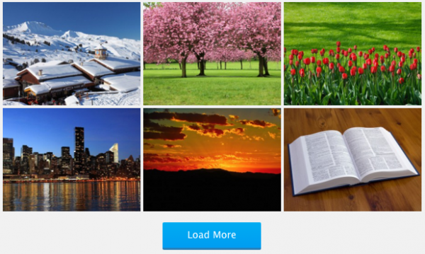 WordPress Portfolio Plugin with Pagination and Load More