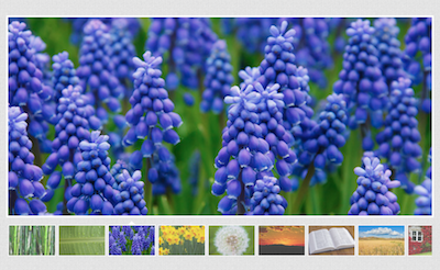 9b0c868eeb1f WordPress Slideshow with Thumbnail Slider