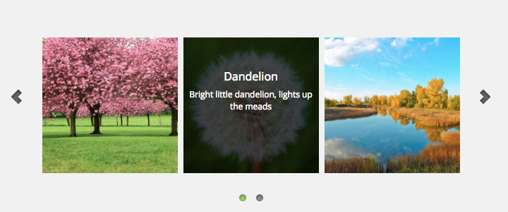 WordPress Carousel with Text Hover Over Effect