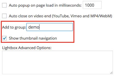 WordPress Video Plugin & Widget Help Document   WordPress