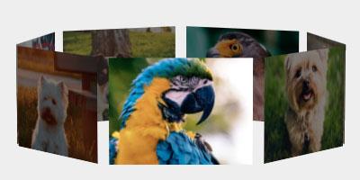WordPress 3D Carousel Plugin | WordPress and WooCommerce Plugins