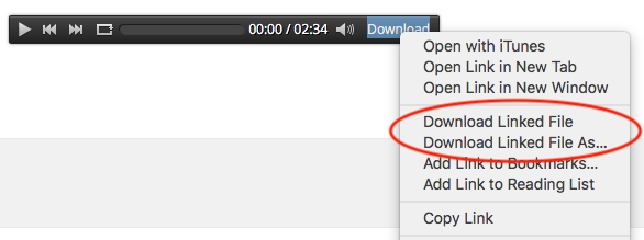 How to add an mp3 download link in the WordPress audio bar