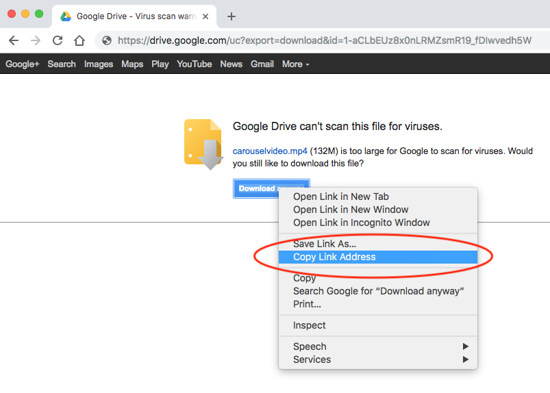 Cant download from google drive