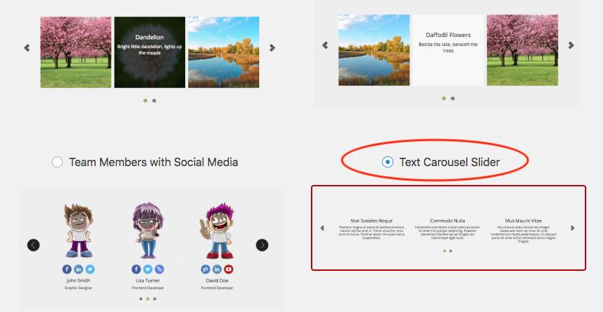 How to create WordPress text carousel | WordPress and