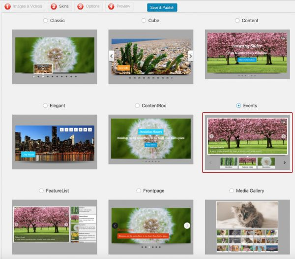 WordPress Slider Skins