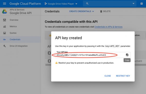 google data api copy key