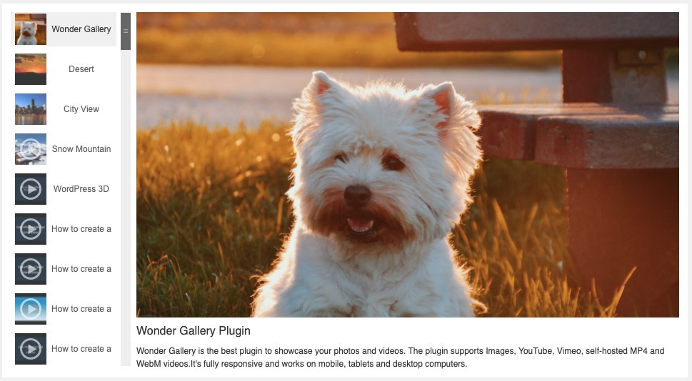 WordPress Vertical Gallery with Left Thumbnails Carousel Light Color Skin