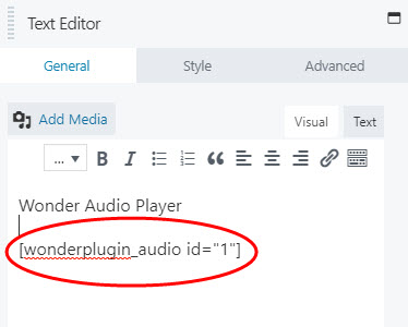 wordpress-audio-beaver-text