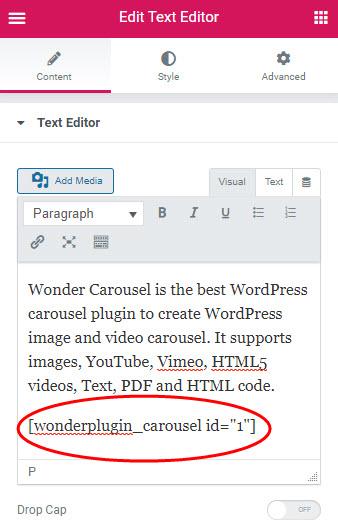 wordpress-carousel-elementor-text