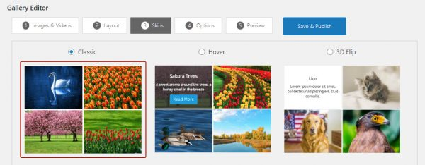 wordpress-grid-gallery-skins