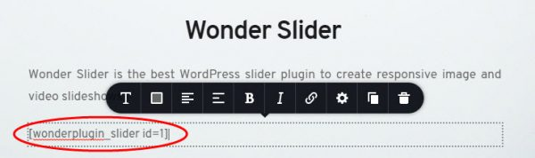 wordpress-slider-brizy-text